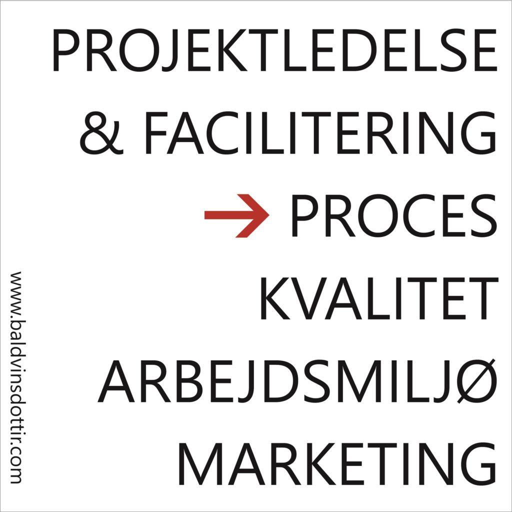 baldvinsdóttir projekt proces kvalitet arbejdsmiljø marketing